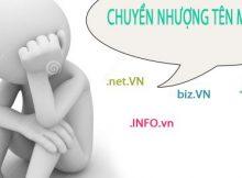 chuyen-nhuong-ten-mien-2