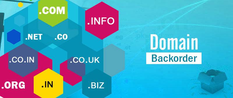 backorder-domains